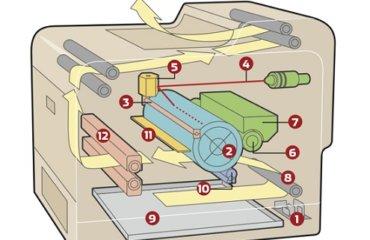 Inside a laser printer
